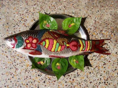 Fish_thekoalkatanews